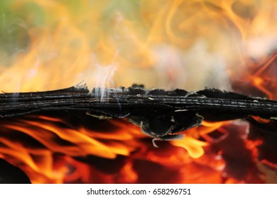 Old plywood beautifully burns in the fire with the formation of texture ash.