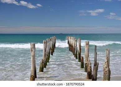 Old poles on St Clair beach in Dunedin