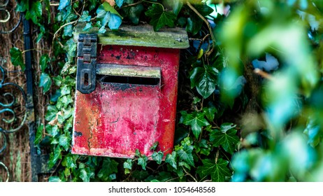 Old postbox in the woods