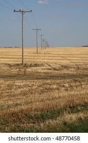 old power line over prairie farm land
