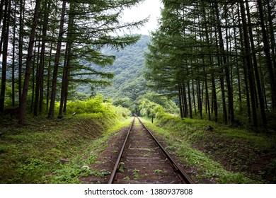 Old railroad tracks and rail bikes in Jeongseon-gun, South Korea.
