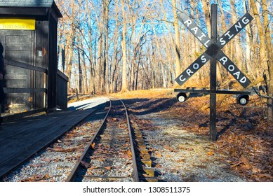 old railway in the autumn forest among bare trees