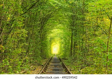 Old railway line. Nature with the help of trees has created a unique tunnel. Tunnel of love - wonderful place created by nature. Klevan. Rivnenskaya region. Ukraine.
