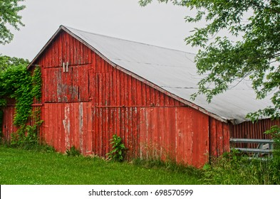 An old red barn stands empty, its paint peeling in the elements.  Grass, weeds and vines are starting to take over this rural scene.