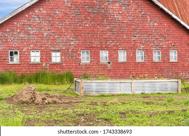 Old Red Barn with white windows and peeling paint in the rural countryside