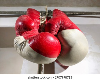 Old red boxing gloves close-up hang on the wall in the gym