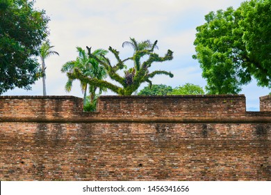 Old red brick wall of Fort Cornwallis in George Town Penang, Malaysia. Background with copy space.