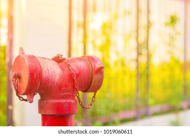Old red fire hydrant with copy space.