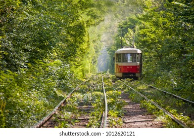 Old red tram at the perspective distance. Tram goes through a tunnel in the forest in the Kiev, Ukraine. Summer landscape in a park with tram, background.