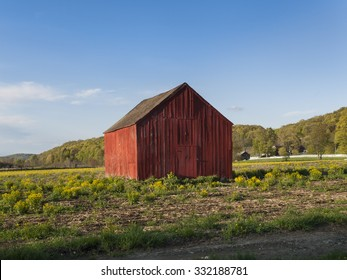 Old Red Wood Barn on a Grassy Plain