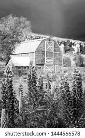 Old red wooden barn in a rural field, Utah, USA.