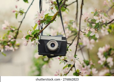 Old a retro the camera hangs on an apple-tree in sunny spring day