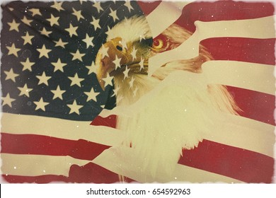 Old, retro style of the US state symbol. Nationaly american flag with famous eagle.