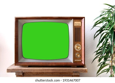 old retro TV with blank green screen for a designer, video film stands in a light room on a wooden table, ficus houseplant nearby, concept of a cozy house 1960-1970, stylish mockup