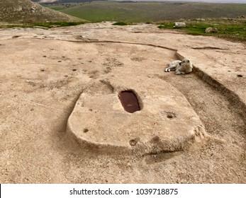 Old rock and a sheepdog in Gobeklitepe,Sanliurfa,Turkey