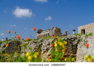 Old Roman city of Volubilis in Morocco