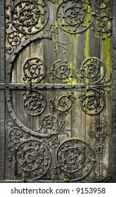 Old rotten wooden door with moss