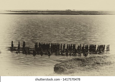 Old rotting posts in a row reflected in the water by the footpath along the Ore Estuary, Orford, Suffolk, UK. Grainy antique vintage sepia effect