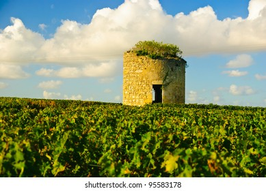 Old ruined stone medieval tower in vineyard on a sunny day in region Medoc, Bordeaux, France