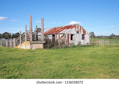 Old rural farm shed and life stock loading ramp at a rural setting in the late afternoon sun, Victoria, Australia 2018
