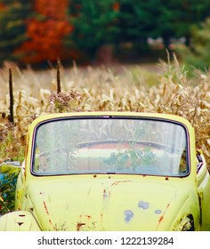 An old rusted yellow car abandonned in a wheat field with autumn background