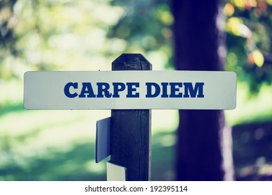 Old rustic signpost with the phrase Carpe Diem, outdoors in sunny woodland with a faded vintage or retro effect to the image.