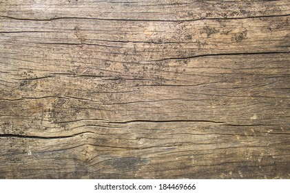 old rustic wood with mold or fungal on top background texture