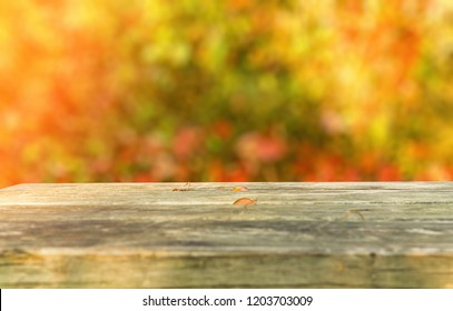 Old rustic wooden park table template against autumnal scene