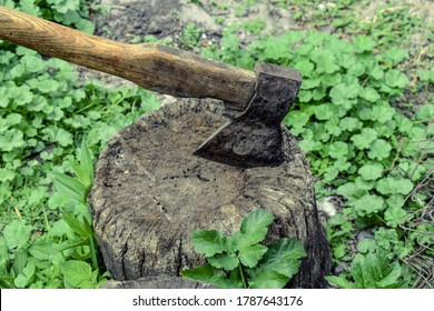 Old rusty ax thrust into a stump on a background of green young grass, close-up. Tool for chopping wood on a spring-summer day