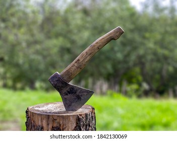 Old rusty axe with wooden handle stuck in the stump. blurred background with pile of wood logs, Large ax sticks out in felled wood of background of forest. Blurred background, sunlight effect