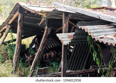 An old rusty decrepit shed