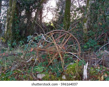 Old rusty iron farm equipment wheels abandoned to ivy, brambles, moss and weeds by the roadside