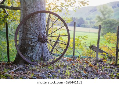 An old rusty metal cartwheel left leaning against a tree