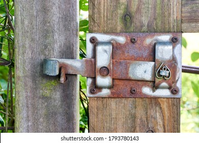 Old rusty metal gate latch on a weathered wooden garden gate in closed position.