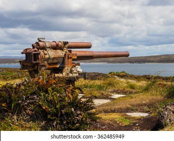 Old rusty naval gun artillery cannon pointing at harbour at Gypsy Cove on Falkland Islands