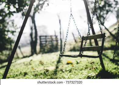 Old rusty swing on a green park, childhood memories