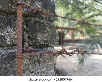 old rusty wasting barb-wired on the concrete pole