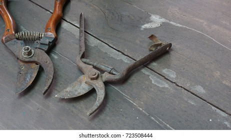 Old rusty weathered pruning shears on wooden table.