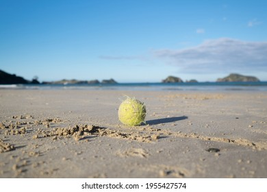 Old sandy tennis ball on a beach in New Zealand, with shallow depth of field and blue sky