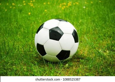 old school soccerball on green grass in spring