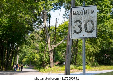 "An old seed limit sign that says ""MAXIMUM 30"". The sign is covered with moss and lichen. Trees and road in the background."