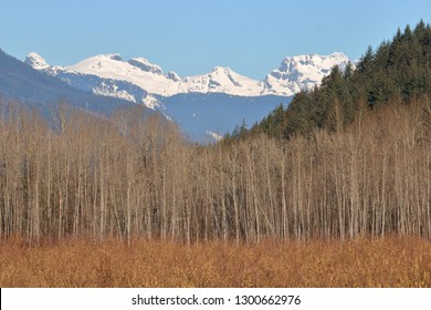 The Old Settler mountain range found in southern British Columbia, Canada's Bear Creak region of the Fraser Valley.