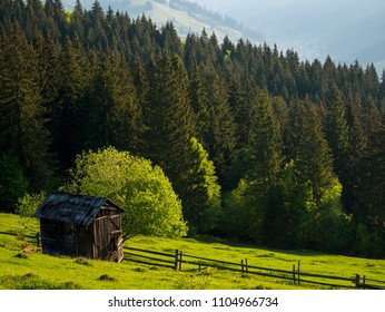 An old shed from mountain area of  Bucovina