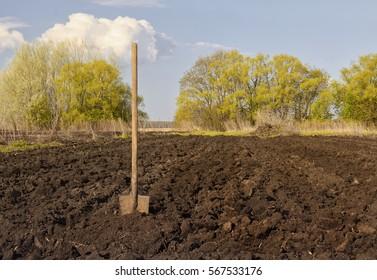 an old shovel stuck into the black earth dug in the garden