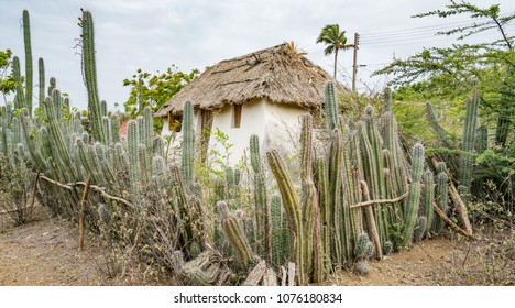 Old Slave hut   Views around the small Caribbean island of Curacao