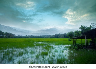 An old small hut in a grass field, Stripe of forest and mountains between a cloudy sky and green grass field, Village photography.