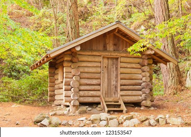 Old solid log cabin shelter hidden among green trees in the forest
