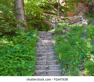 Old stairs in the forest