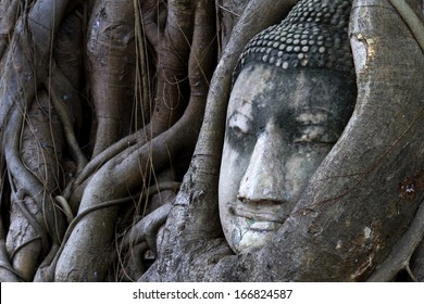 Old statue face buddha sleep in the tree roots , Ayutthaya,Thailand.