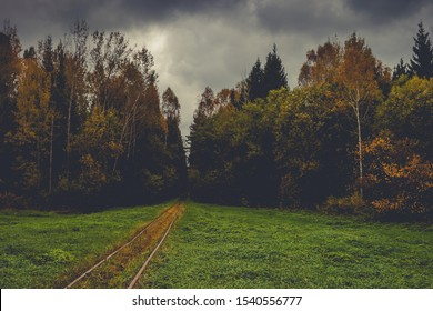 Old steel railway rails go into the autumn forest with overcast thunderclouds
